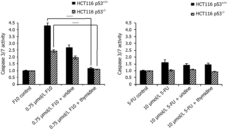 Caspase-3/7 activity rescue data. HCT116 p53 +/+ and HCT116 p53 −/− cells were co-treated with indicated concentrations of (left) F10 or (right) 5-FU along with indicated nucleoside (uridine = 1 mmol/L, thymidine = 80 μmol/L) for 48 h. Caspase activity per cell viability was determined using Promega's Caspase-Glo assay after 48 h and calculated following blank subtraction relative to respective control activity. Experiments done in triplicate ± SEM. P -values calculated using GraphPad Prism ( n = 4; **** P ≤ 0.0001)
