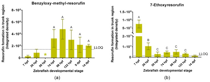 Integrated density of resorufin in the trunk region of intact zebrafish embryos and larvae at different time points during zebrafish development between 7 h post-fertilization (hpf) and 14 d post-fertilization (dpf) after incubation with benzyloxy-methyl-resorufin (BOMR) ( a ) and 7-ethoxyresorufin (ER) ( b ). At 7 hpf ( b ), integrated density of resorufin was determined in the whole embryo. Each bar represents the mean of three biological replicates ± standard deviation (S.D.). The horizontal dotted line represents the lower limit of quantification (LLOQ). In graph ( a , b ), developmental stages with values below the LLOQ were excluded from statistical analysis. In graph ( a ), no statistically significant differences ( p > 0.05) were detected between the developmental stages that showed values above the LLOQ. The mean corrected integrated density value for 50 hpf was below zero (indicated by *). In graph ( b ), significant differences ( p ≤ 0.05) between age groups are indicated by different letters (A, B and C): integrated density of resorufin was significantly higher at 7 and 26 hpf compared to the other developmental stages ( p = 0.050 for all comparisons). Moreover, resorufin formation at 7 hpf was significantly higher than at 26 hpf ( p = 0.050).