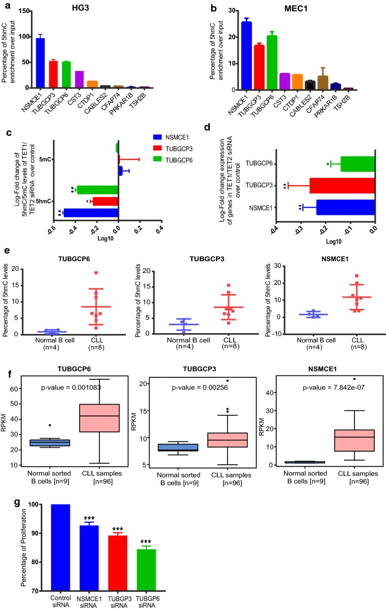 Functional relevance of 5-hmC in regulating gene expression levels. a , b 5-hmC levels of selected 5hDMR genes in HG3 and MEC1 CLL cell lines respectively. TSH2B gene was used as the negative control for hMeDIP as provided by the kit. c Log10-fold change of 5-hmC and 5-mC levels of HG3 TET1/TET2siRNA samples over control siRNA samples d Log10-fold change of relative gene expression levels over GAPDH in HG3 TET1/TET2 siRNA samples over control siRNA samples. e Percentage of 5-hmC levels for sorted B-CLL samples compared to normal B cell samples using quantitative epimark 5-hmC and 5-mC analysis Kit. f Percentage of proliferation for NSMCE1, TUBGCP6 and TUBGCP3 siRNA transfected HG3 samples compared to control siRNA sample using MTT assay. *Indicates p