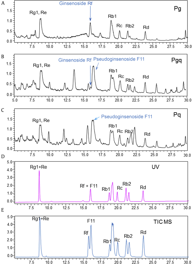 Total <t>ion</t> chromatogram (TIC) <t>of</t> extracts of Pg , Pgq , and Pq by <t>LC-IT-TOF-MS</t> analysis. Ionized peaks in three samples ( Pg , Pq , and Pgq ) reveals that ginsenosides Rg 1 , Re, Rb 1 , Rb 2 , Rc, and Rd are common in all samples (A–C) but ginsenoside Rf is clearly seen in both Pg (A) and Pgq (B), and pseudogensenoside F 11 is clearly seen in Pq (C) and Pgq (B). The ginsenoside Rf and pseudogensenoside F 11 in samples are perfectly matched with standard TICs (D). LC-IT-TOF-MS, LC ion <t>trap</t> <t>time-of-flight</t> <t>mass</t> <t>spectrometry;</t> Pg , Panax ginseng ; Pgq , Panax ginseng Panax quinquefolius hybrid; Pq , Panax quinquefolius .
