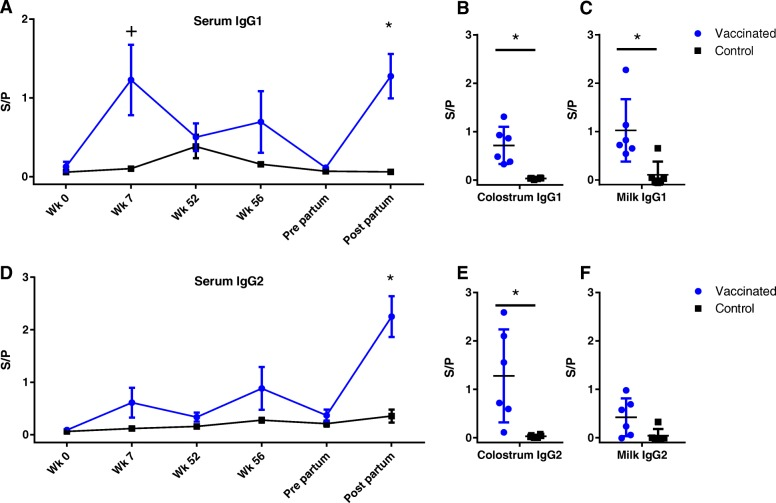 Antibody responses against EfB. IgG1 ( a , b , c ) and IgG2 ( d , e , f ) antibodies specific for EfB measured in serum ( a , d ), colostrum ( b , e ) and milk ( c , f ). S/P = Sample to positive ratio. + = P