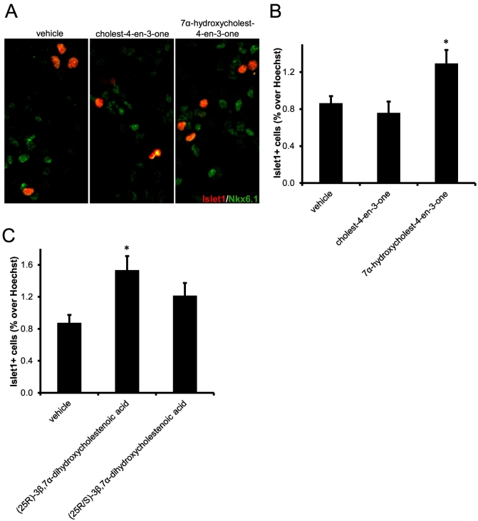 The PXR ligand 7α-hydroxycholest-4-en-3-one increases the number of Islet-1+ oculomotor neurons in mouse E11.5 midbrain primary cultures, but 3β,7α-dihydroxycholest-5-en-(25S)26-oic acid does not. (A) Representative Islet-1+ and Nkx6.1+ stained cell nuclei in cultures treated with vehicle, cholest-4-en-3-one or 7α-hydroxycholest-4-en-3-one. Quantitation of Islet-1+ neurons in primary cultures from E11.5 embryos treated with (B) vehicle, cholest-4-en-3-one or 7α-hydroxycholest-4-en-3-one, and (C) vehicle, 3β,7α-dihydroxycholest-5-en-(25R)26-oic or 3β,7α-dihydroxycholest-5-en-(25R/S)26-oic acid. * P