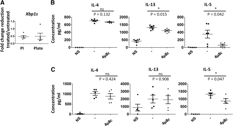 IL-5 is reduced in established mouse TH2 cells upon treatment with 4μ8c. D10 cells were rested in complete T cell media for 24 h at 37 °C. The cells were then left un-stimulated (NS) or stimulated with PMA and ionomycin (PI) or plate-bound α-CD3 and α-CD28 in the presence or absence (−) of 4μ8c for 24 h. a As a control the level of spliced xbp1 mRNA was measured by qRT-PCR, as 4μ8c blocks the ability of IRE1α to cleave xbp1 . The data shown is the fold change in reduction of treated vs. untreated after normalizing to the ns control for five experiments. The supernatants were harvested, and ELISA was performed from these samples as shown in B and C. b The data shown is from six experiments where cells were re-stimulated with PMA and ionomycin in the presence or absence (−) of 4μ8c. c The data shown is for five experiments where the cells were re-stimulated with plate-bound antibodies in the presence or absence (−) of 4μ8c. The standard error, upper and lower bars, and the mean, middle bar, is shown in all graphs. Hypothesis testing was done by Student's T test unpaired, Welch's correction ( p value