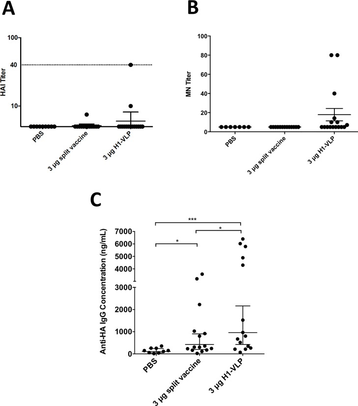 Serum antibody response after two doses of <t>H1-VLP</t> or split-virion vaccine. Aged (24–26 months) BALB/c mice were immunized twice with H1-VLP, split-virion vaccine or <t>PBS.</t> Three weeks post-boost sera from individual mice were analyzed by Hemagglutination Inhibition (HI) (A) and microneutralization (MN) (B) titer against A/California/07/2009 H1N1. Influenza HA-specific IgG concentrations (C) by ELISA. Dotted line in A) represents 40 HAI which is considered the protection level in humans. For statistical analysis, one-way ANOVA was used on the log values for A). For B) and C) Mann-Whitney test was performed on the log values (*** p