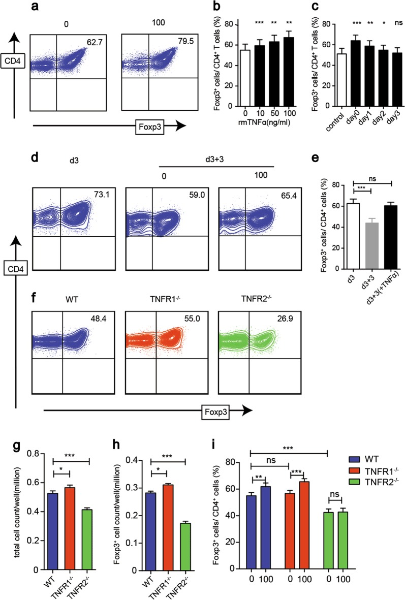 rmTNFα increases iTreg differentiation via TNFR2 in vitro. a , b Naive CD4 + T cells were induced into iTreg with different doses of rmTNFα for three days. The percentages of Foxp3 + T cells were determined. c During iTreg induction, the same dose of rmTNFα was added on day 0, 1, 2, or 3. All the cells were harvested after 4 days. The percentages of Foxp3 + T cells were determined. d , e iTreg induced for three days and reseeded with or without rmTNFα for another three days. The percentages of Foxp3 + T cells were determined. f , g , h Naive CD4 + T cells isolated from WT, TNFR1 −/− , and TNFR2 −/− mice were induced to iTreg. The percentages of Foxp3 + T cells, the total cell numbers and Foxp3 + cell numbers were determined, respectively. i Naive CD4 + T cells isolated from WT, TNFR1 −/− , and TNFR2 −/− mice were induced to iTreg with or without rmTNFα for three days. The percentages of Foxp3 + T cells were determined. * P ≤ 0.05; ** P ≤ 0.01; *** P ≤ 0.001, error bars denote SD. Representative result is from five independent experiments