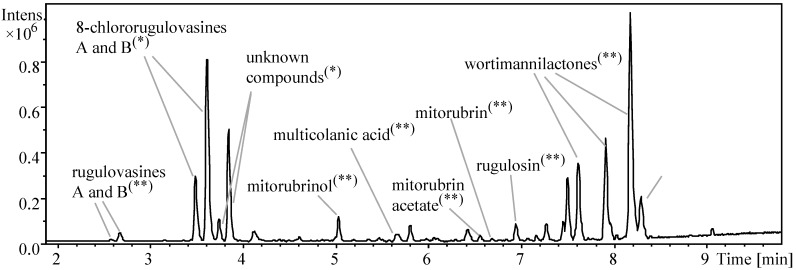 BPC chromatogram (100–1000 Da) from the micro-extract of T. wortmannii growth in PDA medium. Compounds identified by UV/Vis-HRMS based dereplication are indicated. (*) Isolated compounds. (**) compounds confirmed by comparison with reference standards. Peaks not highlighted have not been unambiguously identified. Data acquired at electrospray ionization in positive mode (ESI+), UHPLC-DAD-QTOFMS instrument.