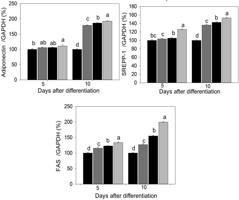 PPAR-γ2, C/EBP-α, adiponectin, SREBP-1 and FAS mRNA expression pattern in differentiated adipocytes were analyzed by qPCR. Data were shown as means ± SEM of six replicates. Different letters a, b, c, d within a treatment indicate a significant difference ( p
