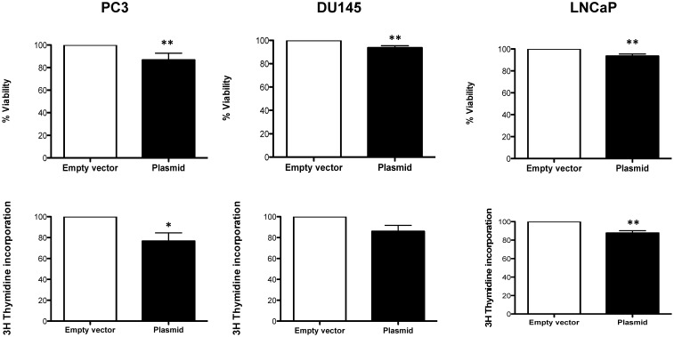 A) % Viability and B) % Cell proliferation upon <t>overexpression</t> of Robo 4 in PC3, DU145 and LNCaP cells; data from ≥3 independent experiments, *p