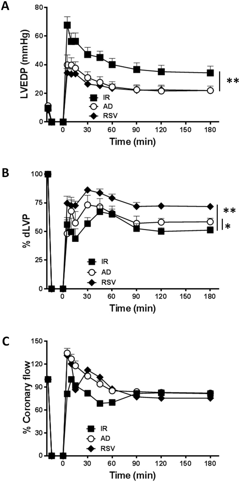 AD preconditioning improves post-ischemic recovery of ventricular function with effects partially overlapping those induced by RSV preconditioning. Hearts preconditioned with adiponectin (AD) were compared to hearts exposed to vehicle-administration (I/R) or resveratrol (RSV), used as a positive control of SIRT-1 activation. A. Diastolic function . Left ventricular end diastolic pressure (LVEDP, mmHg) during the 180 min of reperfusion following 30 min of global ischemia (**p