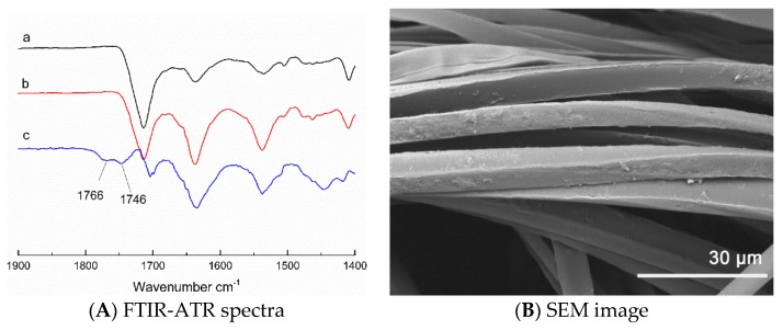 ( A ) FTIR-ATR spectra of the fabric after 5 recharging cycles: ( a ) pristine fabric, ( b ) after cleaning 150 tables, ( c ) difference spectrum of subtracting (a) from (b), ( B ) SEM image of the fabric after 5 recharging cycles.