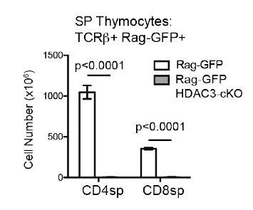 Very few SP thymocytes are generated in CD2-icre HDAC3-cKO mice.