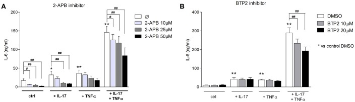 Inhibition of SOCE reduces IL-6 production induced by the <t>IL-17/TNFα</t> combination. Myoblasts were stimulated with IL-17 and/or TNFα in presence or not of the SOCE inhibitor 2-APB (10, 25, and 50 μM) or BTP2 (10 and 20 μM) for 48 h. CCL20 and IL-6 secretion by myoblasts was quantified by ELISA (A,B) . Data are the mean of 7 independent experiments ± SEM; ** p