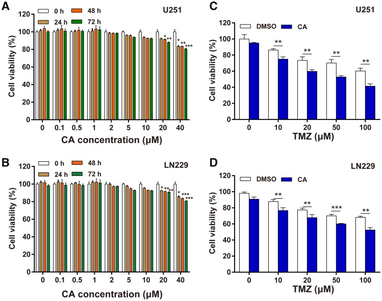 Effects of CA, TMZ, and CA + TMZ on cell proliferation. a The U251 cell viability was detected by <t>CCK-8</t> assay after the cells were treated with the indicated concentrations of CA. b The LN229 cell viability was detected by CCK-8 assay after the cells were treated with the indicated concentrations of CA. c The U251 cell viability was detected by CCK-8 assay after different treatments with TMZ or CA + TMZ. d The LN229 cell viability was detected by CCK-8 assay after different treatments with TMZ or CA + TMZ. The results shown are representative of three different experiments. *p