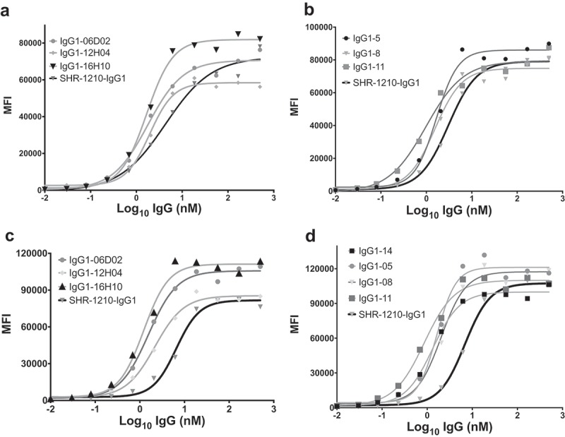Flow cytometric binding to human and cyno PD1+ CHO cells. SHR-1210-IgG1, lead library-derived (A) and designer (B) IgGs were examined for specific binding on CHO-K1 cells expressing human PD1. SHR-1210-IgG1, lead library-derived (C) and designer (D) IgGs were also examined for specific binding on CHO-K1 cells expressing cyno PD1. Concentration-dependent binding was observed against human and cyno PD1 for all clones, with weaker binding being observed for SHR-1210-IgG1 in each experiment.