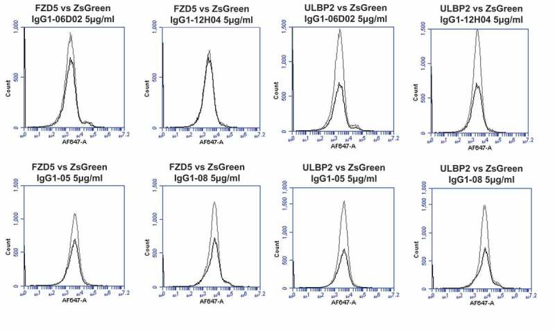 Specificity analyses for library-derived and designer lead IgGs by flow cytometry using transiently-transfected HEK-293 cells. Analyses of binding specificity were performed on HEK-293 cells transiently transfected with plasmids encoding either (A) human PD1 and human VEGFR2, (B) human FZD5 and human ULBP2. All plots show the target of interest transfected cells (grey line) versus ZS green marker-only transfected cells (black line). Each antibody was used in repeat staining at 5 μg/ml. These analyses confirmed that all antibodies (other than the isotype control <t>IgG1)</t> exhibited binding to PD1, but no antibody exhibited measurable signal on ZS-green, VEGFR2, FZD5 or ULBP2 transfected cells.