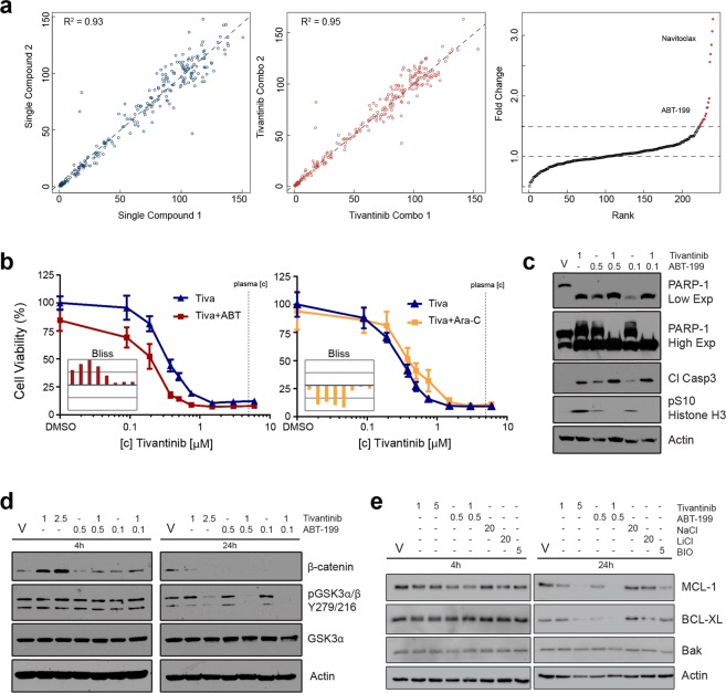 Identification of <t>tivantinib</t> and ABT-199 as a synergistic drug combination in AML cells. ( a ) Results of tivantinib combination drug screen in HL60 cells using a customized library of 240 targeted agents. Replicate correlations of cell viability following treatment with individual library compounds (2.5 μM) (left) and compounds in combination with tivantinib (0.25 μM) (middle) are displayed. Fold change corresponds to the ratio of inhibition of cell viability achieved by a drug combination with tivantinib (0.25 μM) compared to individual single library compounds (2.5 μM). Drugs passing fold change > 1.5 cutoff are highlighted in red. Navitoclax and ABT-199 are labeled. ( b ) Dose response curves for inhibition of viability of HL60 cells of tivantinib and its combination with either ABT-199 (left) or cytarabine (Ara-C; right). Synergy is assessed by the Bliss model of independence (histograms in insets). Displayed in the histograms are the experimentally determined differences for each drug combination from the calculated Bliss additivity on a scale of +20% to −20% cell viability in order of increasing tivantinib concentrations. Vertical lines indicate increments of 10% cell viability. Bars pointing up from the blue baseline (additivity) indicate synergy, bars pointing down indicate antagonism. ( c ) Effects of tivantinib and ABT-199 combination (in μM) on PARP-1 and caspase 3 cleavage as well as pSer10 histone H3 levels after 24 h treatment. ( d ) Effects of tivantinib and ABT-199 combination on β-catenin stabilization and pGSK3α/β Y279/216 levels. ( e ) Effects of tivantinib and ABT-199 combination on MCL-1, BCL-XL, and Bak. V = vehicle (DMSO). Tivantinib, ABT-199, and BIO concentrations are in μM. NaCl and LiCl concentrations are in mM.