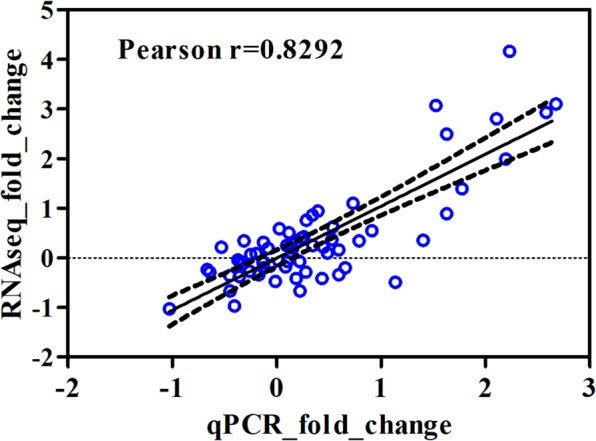 Pearson correlation value between the log2-transformed fold changes of <t>RNA-Seq</t> data and <t>qRT-PCR</t> validation. Each dot (in blue) represents a data point for the selected genes and each corresponding sample (4 genes and 8 replicates in control (D0) and later time point, D1 and D14, respectively). And the dashed lines are 95% confidence interval.