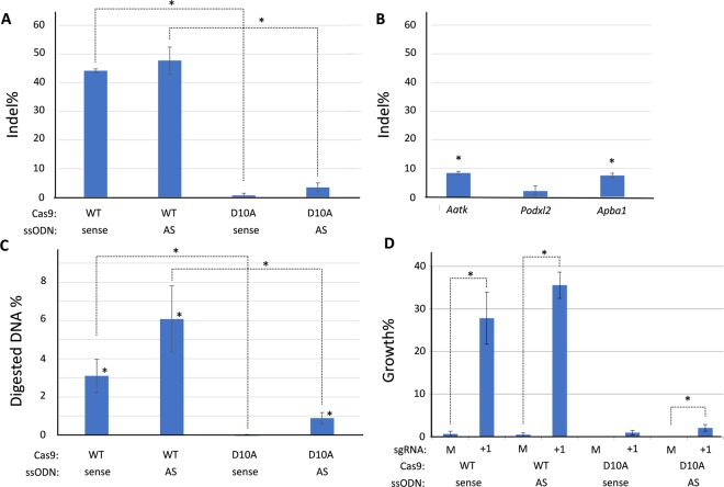 """CRISPR/Cas9 templated gene editing analysis in mouse ES cells. ( A ) Overall gene editing efficiencies obtained in mouse embryonic stem cells depicted as general indel frequencies determined by TIDER (n = 3, one sided Student's T-test, *p ≤ 0.02). ( B ) TIDE analysis of indel formation at predicted off-target loci after wtCas9 and sgRNA + 1 exposure irrespective of the ssODN orientation (n = 3, one sided Student's T-test, *p ≤ 0.009). ( C ) Restriction fragment length polymorphism (RFLP) analysis by Kpn I digest of the Fancf locus provides evidence for template-based repair after Cas9 transfection (n = 6, one sided Student's T-test, *p ≤ 0.02). ( D ) Mouse ES cells show enhanced clonal survival in the presence of 12.5 nM MMC after double-strand break formation by Cas9 and sgRNA + 1 independent of the orientation of the HDR template. A significant difference in relative mESC clone survival was also observed with the antisense (AS) ssODN following Cas9 nickase activity (n = 6, one sided Student's T-test, *p ≤ 0.025), """"M"""" = mock sgRNA."""