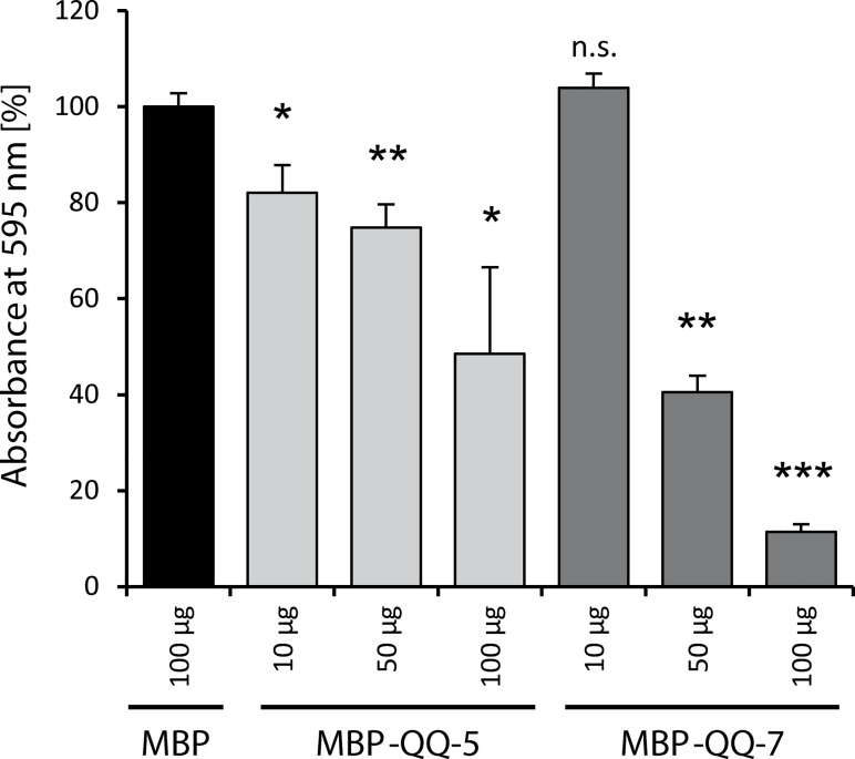S . epidermidis biofilm formation under static conditions in presence of MBP-QQ-5, MBP-QQ-7 and MBP. S . epidermidis was grown in 96 well plates in 200 μL culture medium in presence of purified MBP-QQ proteins MBP-QQ-5 (light grey bars) and MBP-QQ-7 (dark grey bars) at final concentrations of 10 μg, 50 μg and 100 μg. Purified MBP (black bar) was added as control to a final concentration of 100 μg and the determined absorbance set to 100%. Biofilm formation was quantified via crystal violet assay. Means of standard deviations of at least 4 independent biological replicates are indicated. Statistics (unpaired t test) were performed with GraphPad Prism 6 software with differences *p