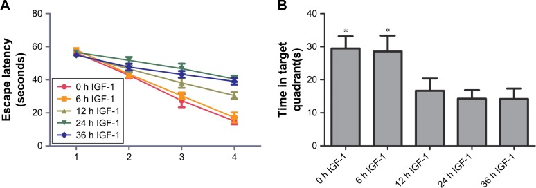 IGF-1 cannot improve the spatial learning and memory of septic rats when it is administrated at 12, 24, or 36 hours after CLP. Notes: ( A ) Escape latency was shorter in the 0-hour and 6-hour groups compared with the other groups on the third and fourth days. No differences were found on the first 2 days among groups (ANOVA, P > 0.1). ( B ) The number of times the rats reached the target quadrant in the 0-hour and 6-hour IGF-1 groups was higher than that of the 12-hour, 24-hour, and 36-hour IGF-1 groups (ANOVA and Bonferroni's test, * P