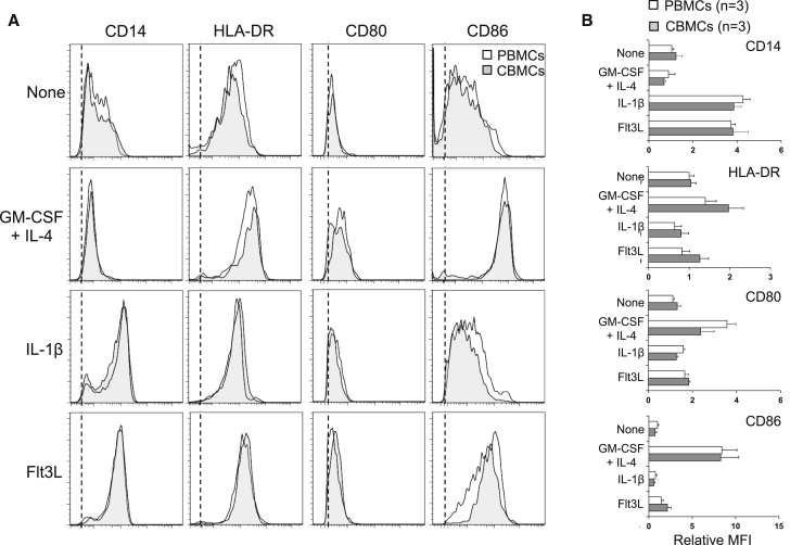 acDC Cytokine Cocktails Induce Equivalent APC Populations in CB and PB PBMCs or CBMCs (2 × 10 6 cells per well in 48-well plates) were cultured for 48 h with the indicated cytokine cocktails, namely, GM-CSF/IL-4, IL-1β, Flt3L, or no cytokines during 24 h followed by the addition of TNF-α, PGE2, IL-1β, and low-dose IL-7 for another 24 h. At the end of this 48-h culture, the phenotype of CD3 − CD19 − CD11c + cells was assessed by flow cytometry using the indicated cell surface markers. (A) Representative staining obtained from one PBMC (white profiles) and one CBMC sample (gray profiles), as compared to isotype control (dotted line indicates the mean fluorescence intensity; MFI). (B) Cumulative data obtained from 3 CBMC and 3 PBMC donors, represented as relative MFI ± SD for each of the indicated markers, normalized to the MFI registered for PBMC samples in the absence of cytokines.
