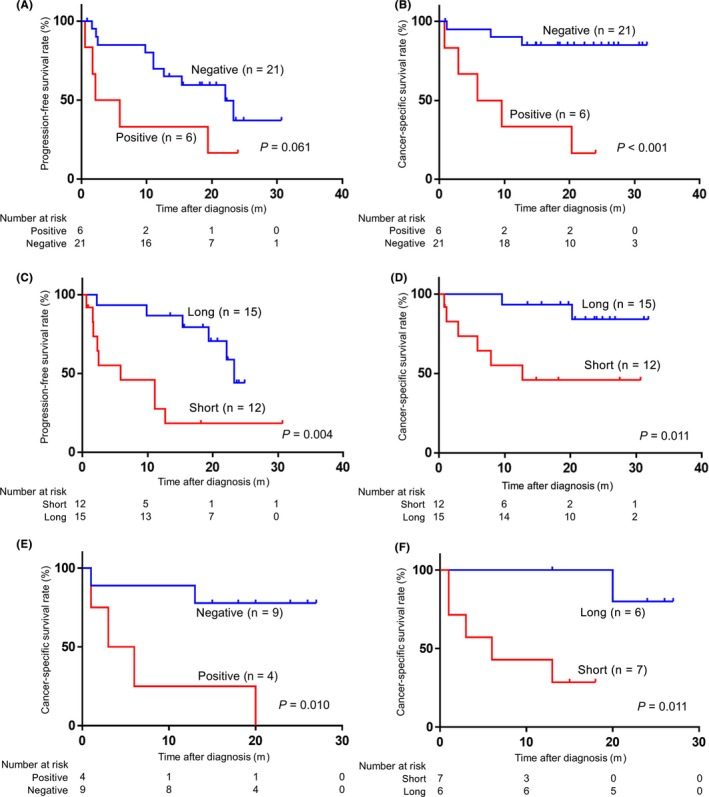 Positive circulating tumor DNA (ctDNA) and short fragment size of plasma cell‐free DNA (cfDNA) were associated with poor prognosis. (Kaplan‐Meier method and log‐rank test). A,B, Prognosis was analyzed in 27 renal cell carcinoma (RCC) patients whose cfDNA samples were sequenced at pretreatment state. Association of ctDNA status (positive vs negative) for progression‐free survival (PFS) (A) and cancer‐specific survival (CSS) (B). C,D, Association of cfDNA fragment size using a microfluidics‐based platform between ≤166 bp (the prominent peak of the distribution of cfDNA fragments according to size) (short) and > 166 bp (long) for PFS (C) and CSS (D). E,F, Prognosis was analyzed in 13 RCC patients with metastasis whose cfDNA samples were sequenced at pretreatment state as in A‐D. Association of ctDNA status (positive vs negative) (E) and cfDNA fragment size (short vs long) (F) for CSS