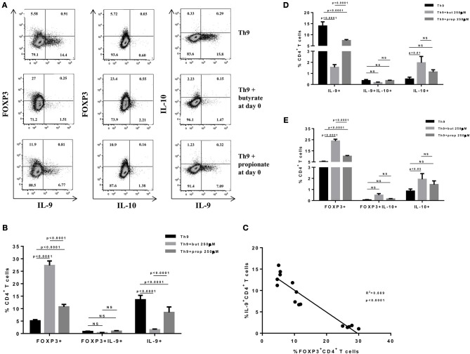 Butyrate enhances FOXP3 expression in CD4+ T cells and impairs the differentiation of Th9 cells. Naïve CD4+ T cells (CD62L+CD44low) were sorted from spleens of FOXP3 GFP mice and cultured in 96-well flat bottom plates with plate bound anti-CD3 (2 μg/ml) and soluble anti-CD28 (0.5 μg/ml) in the presence of Th9 (TGF-β 2 ng/ml, IL-4 10 ng/ml and anti-IFNγ 10 μg/ml) differentiation condition for 4 days. Butyrate and propionate (250 μM) were added in the culture at day 0. At day 4, cells were restimulated with with PMA (50 ng/ml), ionomycin (500 ng/ml), and brefeldin A (5 μg/ml) for 4 h at 37°C and 5% CO 2 , and analyzed by flow cytometry (A) . The frequencies of FOXP3+ and/or IL-9+ CD4+ T cells are represented by bar graphs (B) . A correlation analysis of IL-9 and FOXP3 expression was performed (C) . The frequencies of IL-9+ and/or IL-10+ CD4+ T cells (D) and FOXP3+ and/or IL-10+ CD4+ T cells (E) were determined and are represented by bar graphs. Data are shown as mean ± S.D. Two-way ANOVA and Tukey's multiple comparison test were used for statistical analysis. NS, not significant.