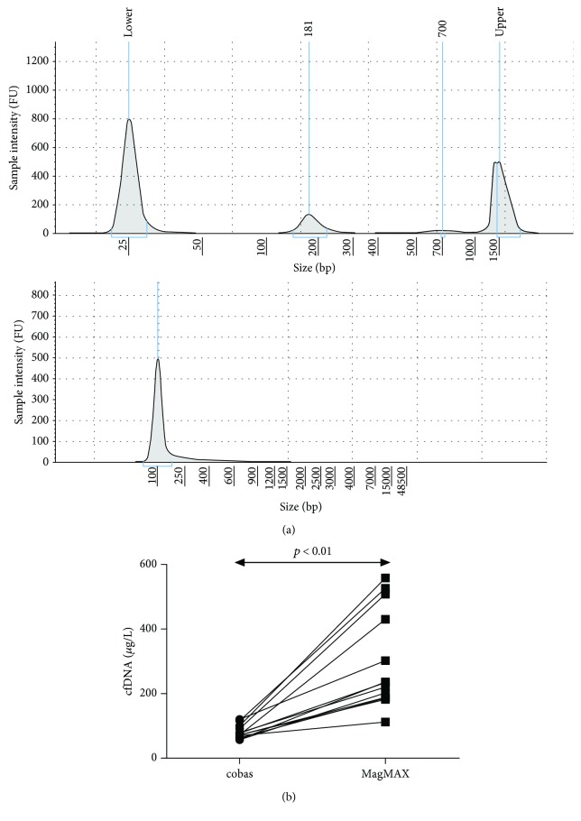 (a) Electropherogram of cfDNA samples using the High Sensitivity <t>D1000</t> <t>ScreenTape®</t> (up) and Genomic <t>DNA</t> ScreenTape® (down). The upper 181 bp peak corresponds to the predominant cfDNA. (b) Comparison of the cfDNA concentrations obtained using the Roche and Thermo Fisher methods for cfDNA extraction from paired plasma samples.
