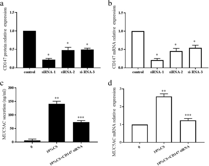 Changes in MUC5AC after <t>CD147</t> silencing by siRNA transfection. CD147 protein ( a ) and mRNA ( b ) expression levels were assessed after siRNA transfection. Three CD147 siRNA were designed, and CD147 siRNA 1 was the most effective at silencing CD147 expression. * p