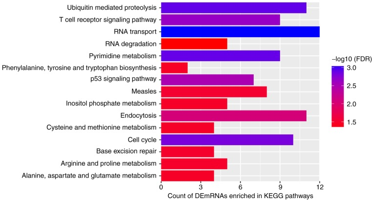 Top 15 most significantly enriched KEGG pathways of DEmRNAs co-expressed with DElncRNAs. The x-axis presents the number of DEmRNAs enriched in KEGG pathways and the y-axis presents the KEGG pathways. KEGG, Kyoto Encyclopedia of Genes and Genomes; DEmRNA, differentially expressed mRNA; DElncRNA, differentially expressed long non-coding RNA; FDR, false discovery rate.