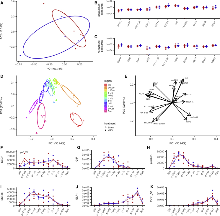 Effect of <t>Bariatric</t> Surgery on Tissue Peptide Content (A–C) Human jejunal peptidomics. (A) Principal-component analysis of the peptide content of human jejunal biopsies from patients before (n = 7, red) and after (n = 4, blue) gastrectomy surgery. Individual samples are plotted on the first two components representing all peptides measured in (B) and (C). (B and C) Peptide quantification for gut hormone peptides and granin-derived peptides for individual samples taken during (red) or after (blue) surgery. Data are normalized by tissue weight and internal standard for individual samples, and the medians are indicated. (D–K) Mouse peptidomics. (D and E) PCA of intestinal peptides measured in 3 VSG and 4 sham-operated mice in the stomach and every 5 cm along the gastrointestinal (GI) tract. Individual samples are color coded for their region of origin, and shape indicates the surgery type (D). Eigen vectors of each quantified peptide on the first two principal components (E). (F–K) Quantification of secretin (F), GIP (G), the N-terminal part of proCCK (H), SST28 (I), GLP-1 (J), and PYY1-36 (K) along the different regions of the GI tract, represented as median and individual samples from sham-operated (red) and VSG-operated (blue) mice. Differences between groups were assessed in each tissue for each peptide using a Mann-Whitney U test. Sto, stomach; Duo: duodenum; Jej, jejunum; Il, ileum; Col, colon; Rec, rectum; p, proximal; i, intermediate; d, distal; GHRL, ghrelin; proGAST, N terminus of proGastrin; NEUK_A, neurokinin A; SUB_P, substance P; SST14/28, somatostatin 14/28; GIP, glucose-dependent insulinotropic polypeptide; proCCK, N-terminal part of proCCK; SECR, secretin; NEUT, neurotensin; GRPP, glicentin-related peptide; OXM, oxyntomodulin; GLP1/2, glucagon-like peptide 1/2; PYY1-36/3-36, peptide YY1-36/3-36; INSL5 Nter, N-terminal part of INSL5 C-chain; INSL5 B-chain, B-chain of INSL5 (after reduction alkylation).