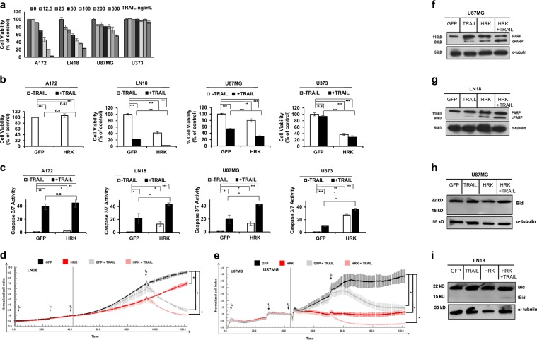HRK overexpression cooperates with TRAIL to induce cell death in GBM cells. a GBM cells have differential response to TRAIL as measured by cell viability assays of cells in response to TRAIL treatment (0-500 ng/ml) for 24 h. b Cell viability analysis of GFP- or HRK- overexpressing A172, LN18, U87MG, and U373 cells upon 24 h TRAIL treatment (50 ng/ml). c Caspase 3/7 activity analysis of GFP- or HRK- overexpressing A172, LN18, U87MG, U373 GBM cells after 3 h TRAIL treatment (TRAIL concentrations were 20 ng/ml, 20 ng/ml, 50 ng/ml, 200 ng/ml for each cell line respectively). (*, **, *** denote p