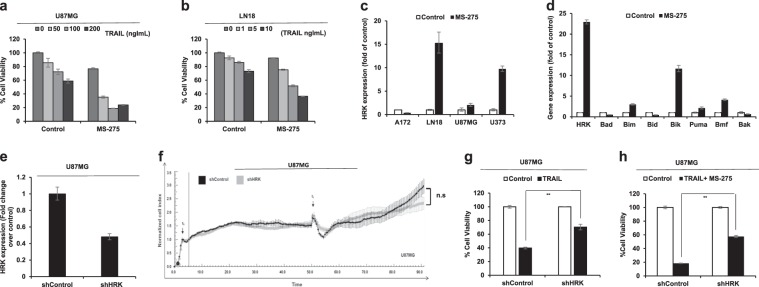 HRK expression is partly required for TRAIL response and TRAIL sensitization by secondary agents. a , b Viability analysis of U87MG cells ( a ) and LN18 cells ( b ) upon differential doses of TRAIL and MS-275 (5 μM) combination. c qRT-PCR analysis of Hrk expression in four established GBM cell lines (A172, LN18, U87MG, U373) upon MS-275 treatment (5 μM). d qRT-PCR analysis of Bcl-2 family member genes when treated with MS-275 (5 μM). e qRT-PCR analysis of Hrk expression in shControl and shHRK transduced U87MG cells. Values are normalized to the level of housekeeping gene, GAPDH. f Long-term cell growth analysis of shControl and shHRK U87MG cells (t0: time of cell seeding, t1: time of media change). g Cell viability analysis of shControl and shHRK transduced U87MG cells upon TRAIL treatment (75 ng/ml). h Cell viability analysis of shControl and shHRK transduced U87MG cells upon TRAIL (75 ng/ml) and MS-275 (5 μM) combination. (*, **, *** denote p