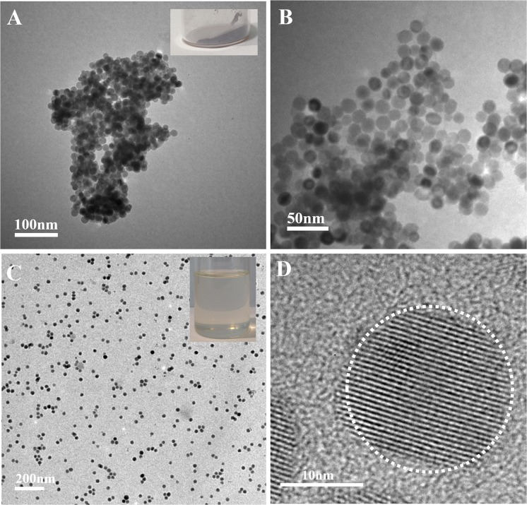 Representative <t>TEM</t> images tetragonal BaTiO 3 <t>nanoparticles.</t> ( A,B ) TEM images of tetragonal BaTiO 3 nanoparticles after the removal of carbon shell layer with different scale bars. ( C ) TEM image of tetragonal BaTiO 3 nanoparticles capped by bi-functional ligands. ( D ) HR-TEM of tetragonal BaTiO 3 nanocrystals coated with bi-functional ligands. The digital image of tetragonal BaTiO 3 nanoparticles without carbon layer as the inset in ( A ). The digital image of toluene solution of tetragonal BaTiO 3 nanocrystals coated with bi-functional ligands as the inset in ( C ).