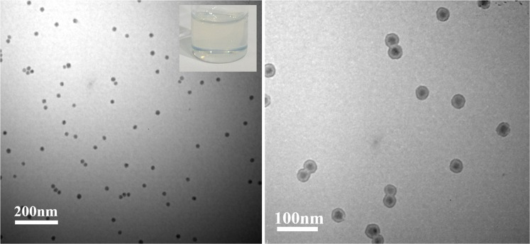 TEM characterization of core/shell tetragonal BaTiO 3 /PMMA nanoparticles with different scale bars. ( A ) TEM image of core/shell tetragonal BaTiO 3 /PMMA nanoparticles; Inset: digital image of toluene solution of tetragonal BaTiO 3 /PMMA nanoparticles. ( B ) TEM image of core/shell tetragonal BaTiO 3 /PMMA nanoparticles after PMMA macromolecular shell stained by RuO 4 .