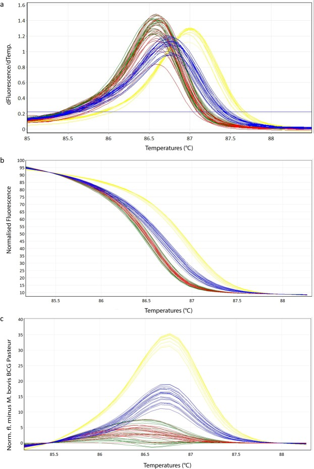 Representative high resolution melting graphs corresponding to one high resolution melting analysis of a subset of cultured samples (n = 22). Curves of tested samples previously identified as M. tuberculosis are shown in yellow, M. microti in blue, M. bovis/M. bovis BCG in red and M. caprae in green. ( a ) Melting curves; ( b ) Normalized plot; ( c ) Difference plot.