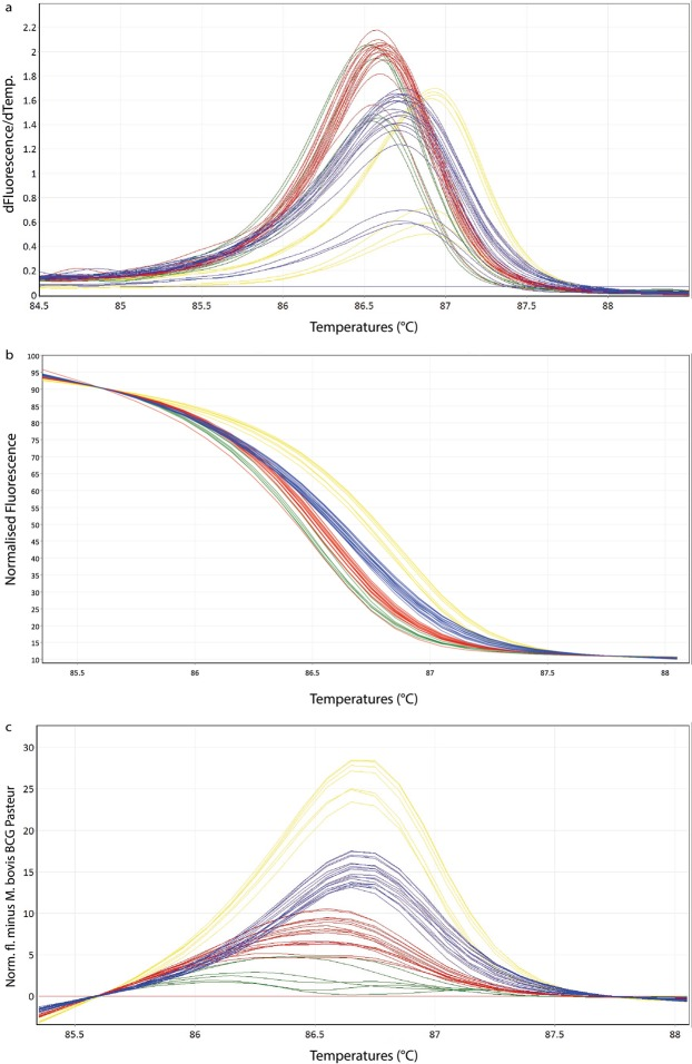 Representative high resolution melting graphs corresponding to one high resolution melting analysis of a subset of clinical specimens (n = 19). Curves of tested samples previously identified as M. tuberculosis are shown in yellow, M. microti in blue, M. bovis/M. bovis BCG in red and M. caprae in green. ( a ) Melting curves; ( b ) Normalized plot; ( c ) Difference plot.