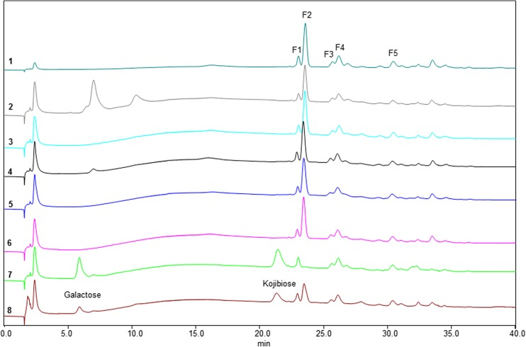 HPAEC profiles of oligosaccharides in 1 = the GL34 mixture (1 mg mL − 1 , blank) and the hydrolysis products after incubation of GL34 with 2 = α-amylase from porcine; 3 = α-amylase from A. oryzae ; 4 = <t>α-glucosidase</t> from yeast; 5 = iso-amylase from Pseudomonas sp . ; 6 = pullulanase type 1 from K. planticola ; 7 = β-galactosidase from A. oryzae and 8 = β-galactosidase from K. lactis