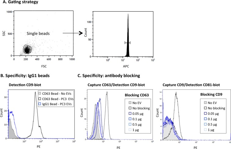 Specificity of EV immunocapture on antibody-coated microbeads. ( A ) Gating strategy. EVs immobilised on 6 μm APC-beads were stained using biotinylated antibody followed by PE-conjugated streptavidin and analysed by flow cytometry. A gate containing only single beads was created in the Forward Scatter (FSC)/Side Scatter (SSC) plot. A second gate, within single beads, confirmed the APC fluorescence of microbeads. 1500–2000 events from this combined gating were acquired and analysed for PE labelling. ( B ) Negative control, IgG1. 10 9 particles of PC3-derived EVs were captured onto either anti-CD63 (Clone TEA3/18) or IgG1-coated beads followed by detection with biotinylated antibody directed against CD9. A sample with no EVs is also shown for comparison. ( C ) Antibody blocking. 10 9 particles of PC3-derived EVs were pre-incubated with increasing amounts of the indicated soluble blocking antibody [anti-CD63 (Clone TEA3/18), anti-CD9 (Clone VJ1/20)] before being incubated for capture on CD63- (left) or CD9- (right) coated beads. Experiments are representative of 3 independent repetitions.