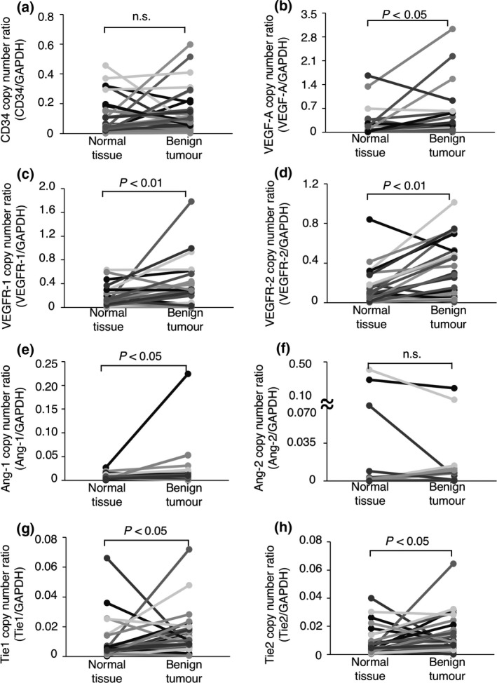 The expression of angiogenesis‐related genes in canine benign tumour tissues and the normal tissues surrounding each tumours. (a) The expression of the CD 34 gene. (b) The expression of the VEGF ‐A gene. (c) The expression of the VEGFR ‐1 gene. (d) The expression of the VEGFR ‐2 gene. (e) The expression of the Ang‐1 gene. (f) The expression of the Ang‐2 gene. (g) The expression of the Tie1 gene. (h) The expression of the Tie2 gene. The expression of each gene was compared between tumour tissues and the normal tissues surrounding the tumours using the Wilcoxon rank‐sum test. n. s. = not significant.