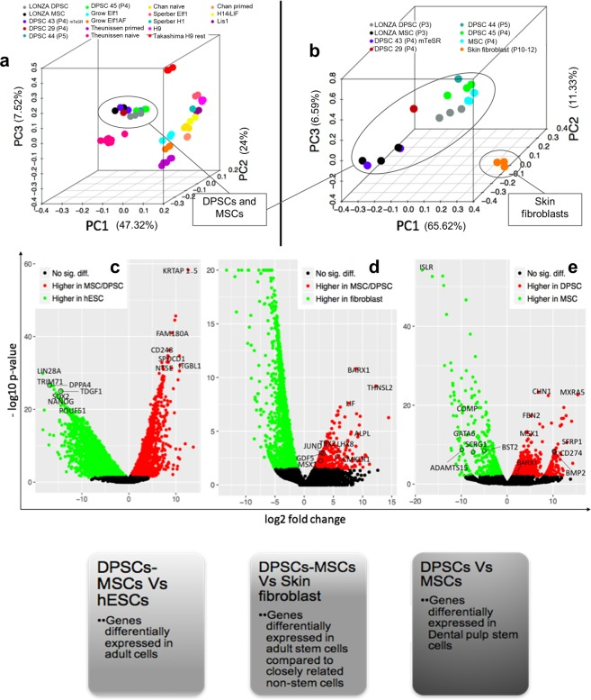 The gene expression of DPSCs compared to MSCs, Fibroblasts and hESCs. ( a ) Principal component analysis (PCA) of DPSCs, MSCs and hESCs showed that DPSCs and MSCs grouped together. ( b )Principal component analysis (PCA) of DPSCs with skin fibroblasts and MSCs from literature showed that DPSCs have distinct expression profiles from foreskin fibroblasts. ( c ) Volcano plot of genes differentially expressed in MSCs/DPSCs vs. hESCs. ( d ) Volcano plot of genes differentially expressed in MSCs/DPSCs compared to fibroblasts. ( e ) Volcano plot of genes differentially expressed in DPSCs vs. MSCs.