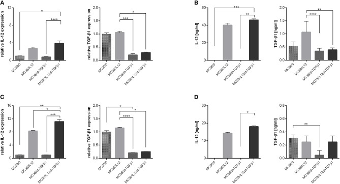 Effectiveness of IL-12 overexpression and TGF-β1 silencing in genetically modified MC38 cell lines. (A,C) Relative expression of IL-12 and TGF-β1 measured by real-time PCR in MC38 cells cultured in normoxic (A) or hypoxic (C) conditions. (B,D) Concentration of IL-12 and TGF-β1 in supernatants from MC38 cells cultured in normoxic (B) or hypoxic (D) conditions. The results are given as the mean ± SD calculated for at least two repeats in two independent experiments. The differences between the groups were estimated using the nonparametric Kruskal-Wallis test followed by Dunn's multiple comparison test (* p