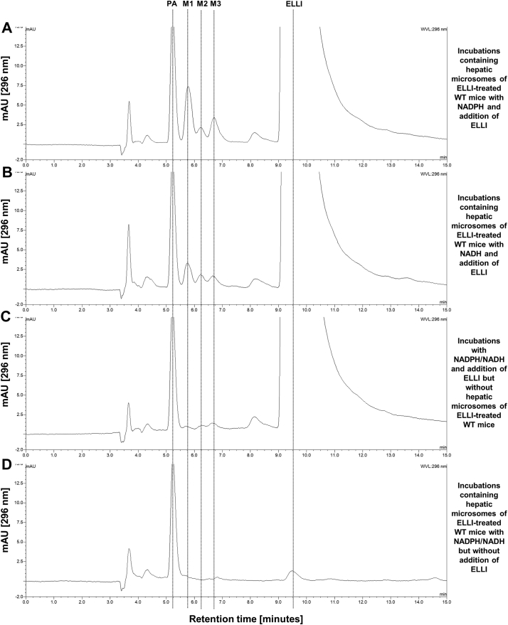 Representative <t>HPLC</t> chromatograms from in vitro incubations with pooled hepatic microsomal fractions from <t>ellipticine-pretreated</t> WT mice with ellipticine (ELLI) and either NADPH or NADH as cofactor. M1: 9-hydroxyellipticine; M2: 12-hydroxyellipticine; M3: 13-hydroxyellipticine. Phenacetin (PA) was used as internal standard.