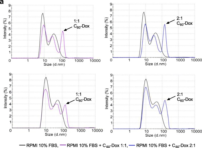 Hydrodynamic size (diameter, nm) of 1 μM С 60 -Dox complexes in RPMI cell culture medium supplemented with 10% FBS at 0 ( a ) and 72-h ( b ) incubation. Intensity (%) percentage of all scattered light intensity