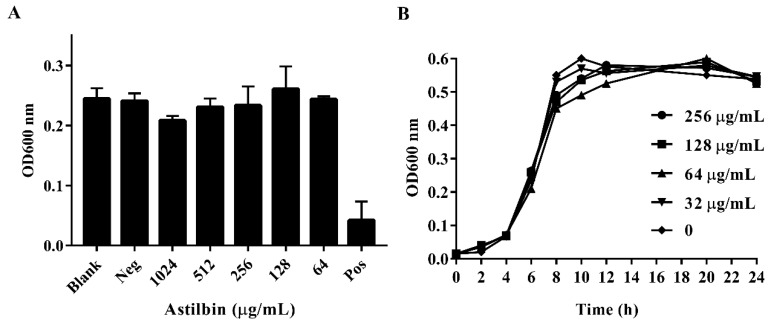 """The minimum inhibitory concentration (MIC) of astilbin against S. mutans and the growth curves of S. mutans treated with astilbin. ( A ) The growth state of S. mutans in the presence of different concentrations of astilbin. """"Neg"""" represents the negative control group and """"Pos"""" represents the positive control group. The blank group contained only the brain heart infusion (BHI) broth and the tested S. mutans , the negative control group was treated with 1% dimethyl sulfoxide (DMSO), and the positive control group was treated with 20 μg/mL of chlorhexidine. ( B ) The growth curves of S. mutans treated with different concentrations of astilbin. The initial inoculum was approximately 1 × 10 6 colony-forming units/mL. The growth rates were measured by determining the optical density (OD) every two hours for one day."""