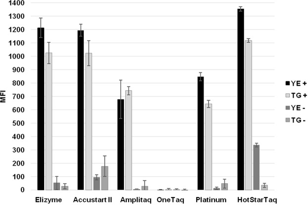 Impact evaluation of Master Mix used in singleplex PCR. In graph: Elizyme = 2X EliZyme HS Robust MIX (Elisabeth Pharmacon, Czech Republic); Accustart II = AccuStart II PCR ToughMix (QuantaBio, Massachusetts, USA); <t>Amplitaq</t> = AmpliTaq <t>Gold</t> 360 Master Mix (Thermo Fisher Scientific, Massachusetts, USA); OneTaq = OneTaq Hot Start 2X Master Mix with GC Buffer (New England BioLabs, Massachusetts, USA); Platinum = Platinum Hot Start PCR 2X Master Mix (Invitrogen, California, USA); HotStarTaq = HotStarTaq DNA Polymerase (Qiagen, Germany). YE = Y . enterocolitica; TG = T . gondii ; plus sign in legend = positive sample; minus sign = NTC.