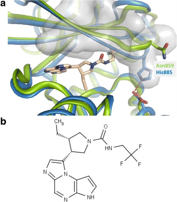 A. Upadacitinib modeled in the crystal structure of JAK1. A model of JAK1 complexed to upadacitinib is shown in blue. <t>JAK2</t> (Protein Data Ban code: 2B7 a ) is overlaid in green (18). b . Chemical structure of (3S,4R)-3-ethyl-4-(3H-imidazo [1, 2-a] pyrrolo [2, 3-e] pyrazin-8-yl)-N-(2,2,2-trifluoroethyl) pyrrolidine-1-carboxamide (upadacitinib)
