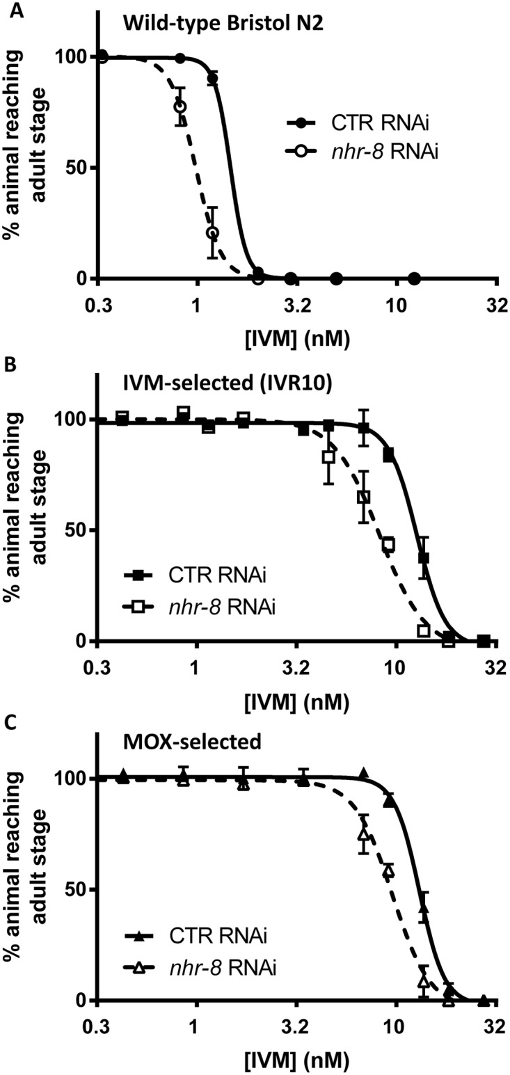 Effects of nhr-8 silencing on susceptibilities of wild-type N2 Bristol (A), IVM-selected (IVR10) (B) and MOX-selected (C) C . elegans strains to IVM in a larval development assay. Worms were fed on HT115 bacteria transformed whether with L4440 vector that produces double-stranded RNA against the Cel-nhr-8 gene, or with the empty vector as control. Values for dose response curves to IVM of IVM- and MOX-selected worms, both IVM-resistant, and wild-type represent the percentage of L1 reaching the young adult stage after 55 hours of incubation at 21°C within the presence of increasing doses of IVM. Data are mean ± SD from 4–6 independent experiments. Efficiencies of nhr-8 knockdown are presented in S2 Fig and S2 Table .