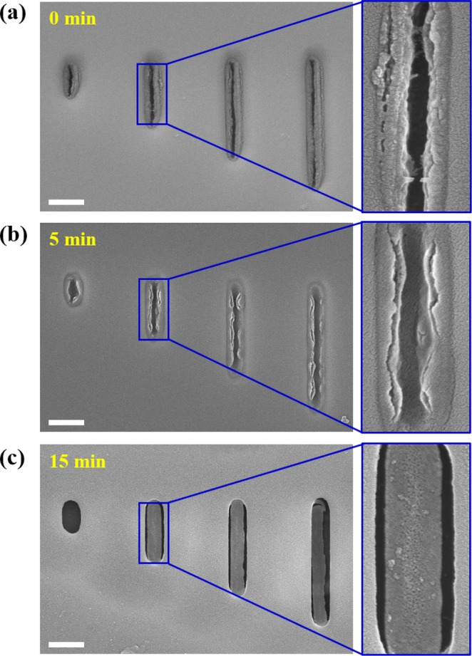 ( a – c ) SEM images of lambda DNAs detached at −30 V for 0, 5, and 15 min, respectively. All scale bars are 500 nm.