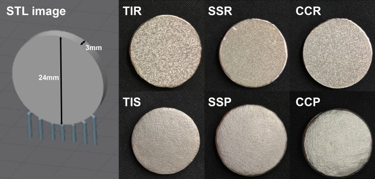 Disk geometry and build orientation <t>(stereolithography</t> (STL) digital image), with photographs of rough and smooth disks. TIR—Titanium alloy rough, TIP—Titanium alloy polished, SSR—Stainless steel rough, SSP—Stainless steel polished, CCR—Cobalt chromium alloy rough, CCP—Cobalt chromium alloy polished.